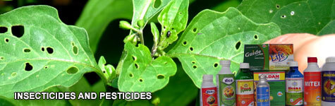 Pesticide Manufacturers,Chemical Pesticide Manufacturers,Insecticides Manufacturers in Bangalore India