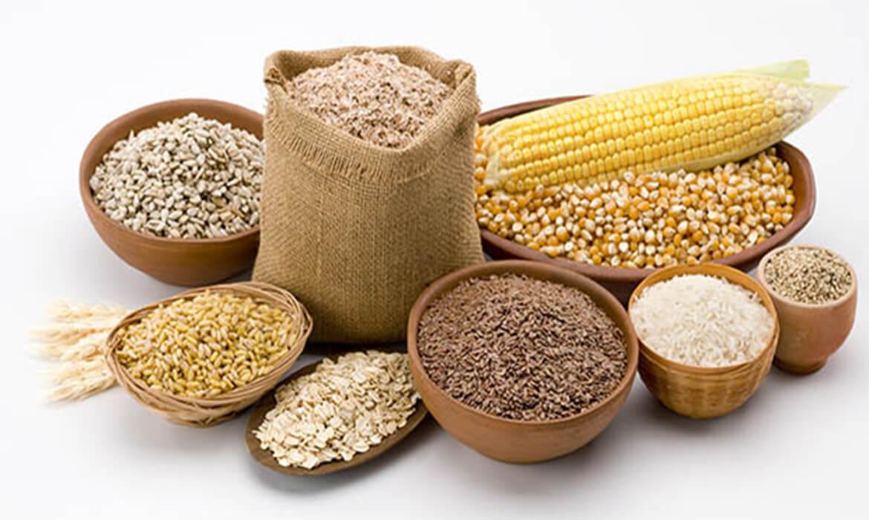 Cereals & Food Grains in Bangalore
