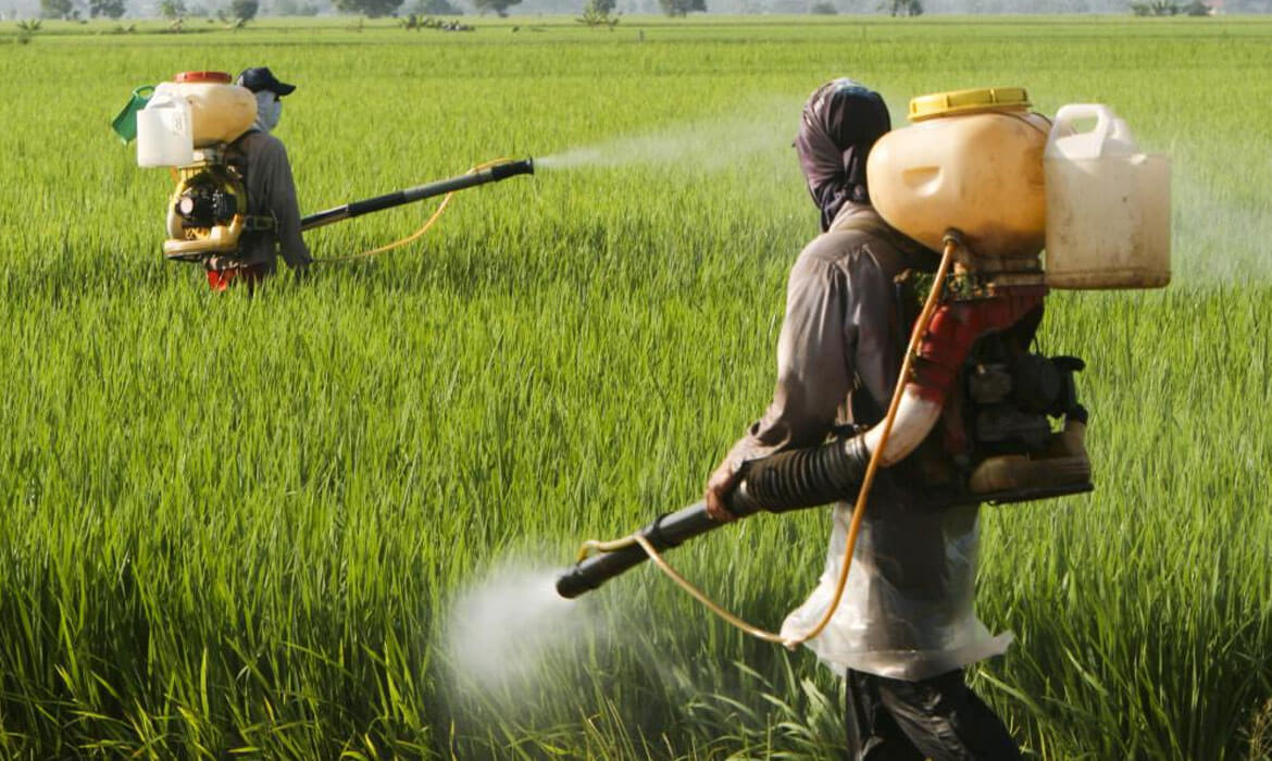Insecticides and Pesticides Manufacturer and supplier in bangalore