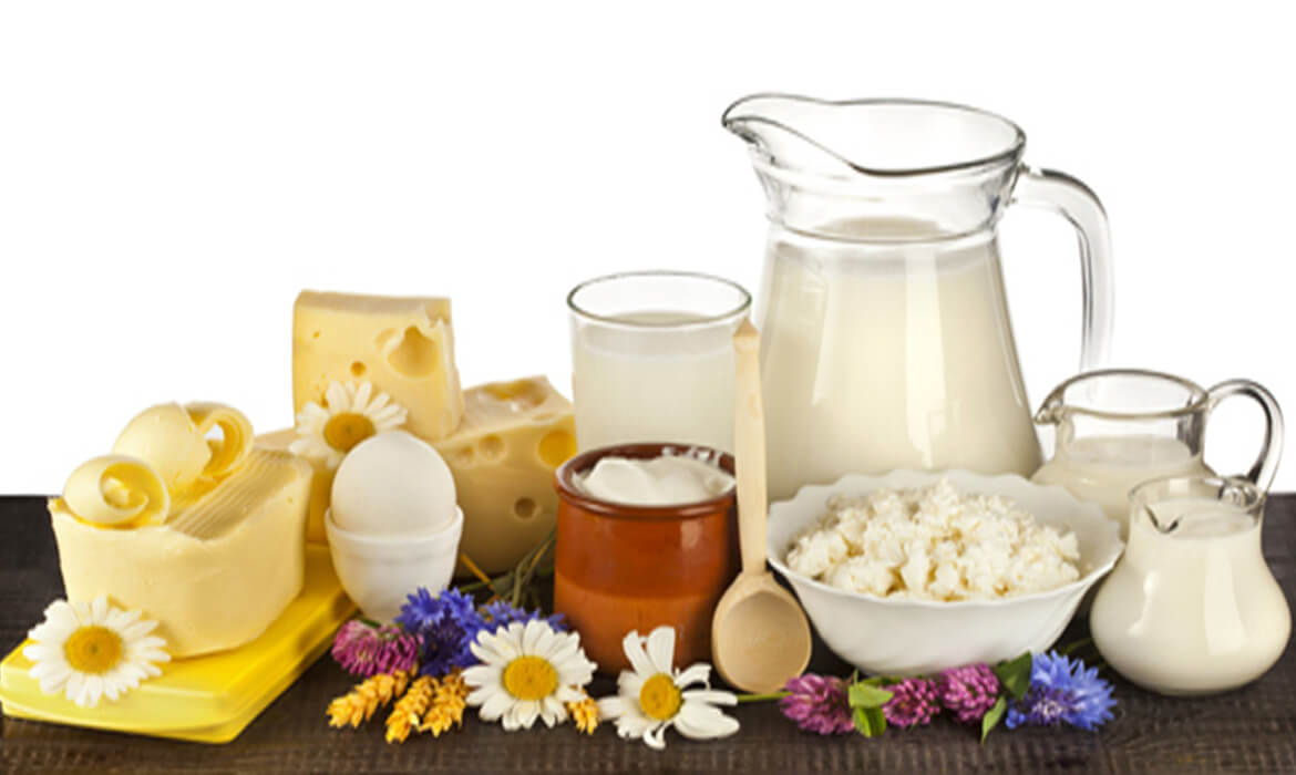 Milk & Dairy Products Manufacturer and Supplier in Bangalore