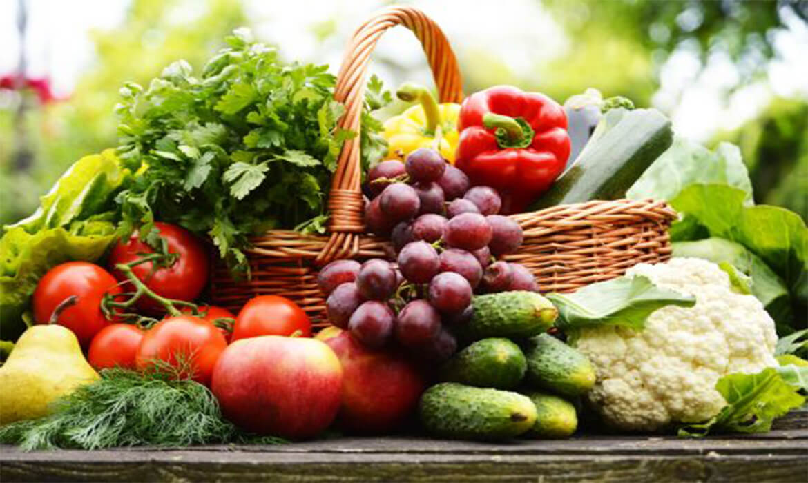Organic Food Grains & Vegetables Manufacturer and Supplier in Bangalore