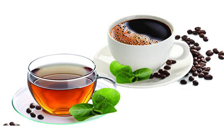 Tea & Coffee in Bangalore
